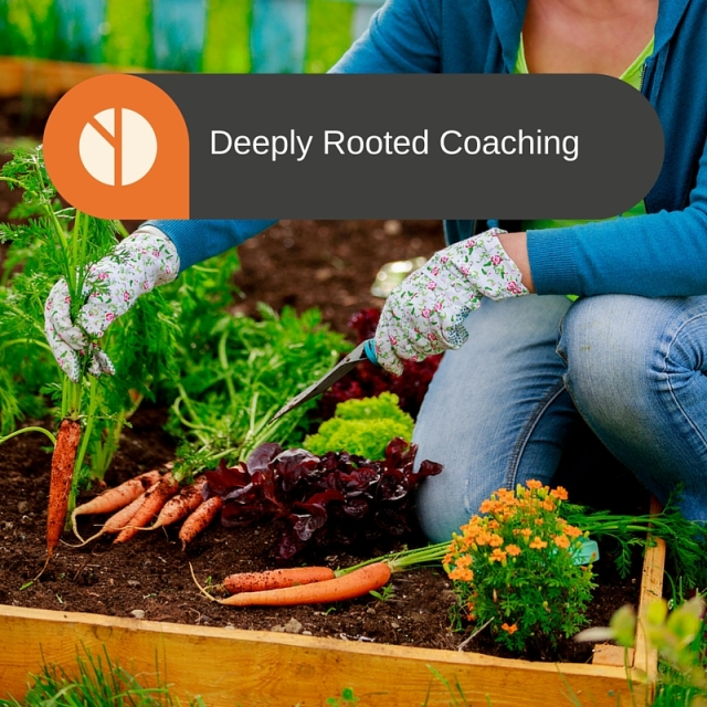 Deeply Rooted Coaching (3)